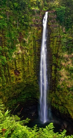 Waterfall in the jungle. Big island. Hawaii Stock Photo - 7466650