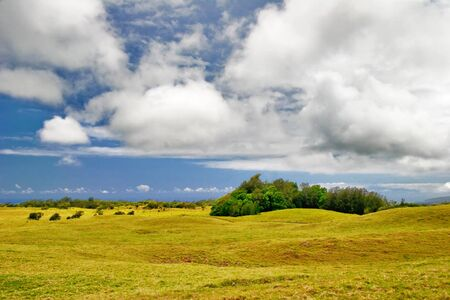 Landscape of Big Island. Hawaii. USA