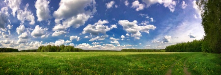 Stitched Panorama. Summer field under blue sky  photo