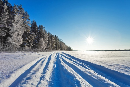 Winter field under blue sky  photo
