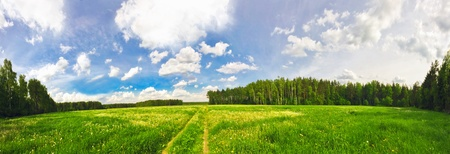 Stitched Panorama. Green field under blue sky  photo