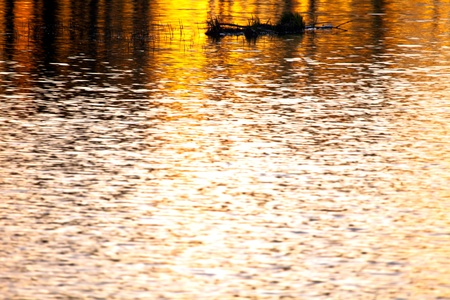 Reflections of sunset in surface lake water photo
