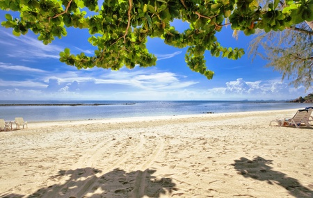 Exotic tropical beach under blue sky. Thailand  photo