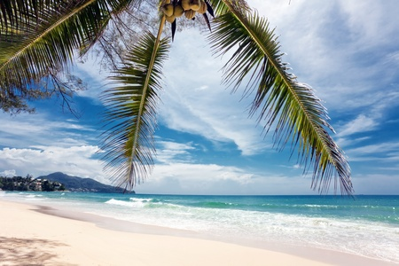 Exotic tropical beach under blue sky. Thailand Stock Photo - 10359948
