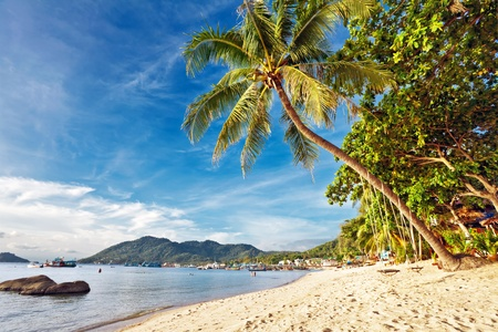 Exotic tropical beach under blue sky. Thailand  Stock Photo - 10420829
