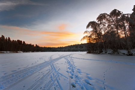 After beautiful winter sunset in the forest Stock Photo - 10625656