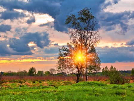 Landscape with coloful sunset in summer field  photo