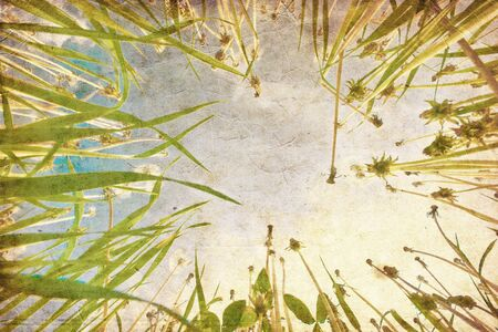 Green grass under blue sky in grunge and retro style  Stock Photo - 10654876