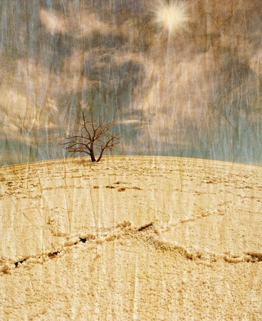 Lifeless tree in the salt desert under blue sky in grunge and retro style photo