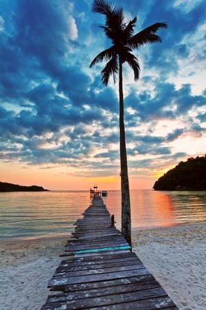 widok na plaży z palmami i pomost do morza o zachodzie słońca