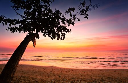 Tropical beach at beautiful sunset. Nature background  Stock Photo - 12108515