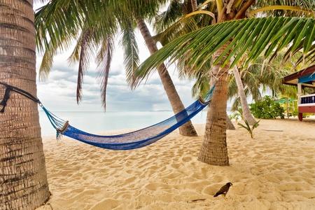 hammock on shore near sea  Thailand Stock Photo - 12782476