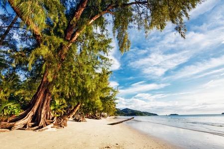 Exotic stones tropical beach under blue sky. Thailand Stock Photo - 12999713