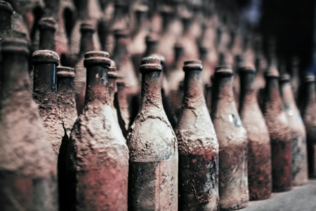 A lot of old wine bottles covered with dust photo