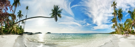 Stitched panorama of exotic tropical beach under blue sky  Thailand  photo