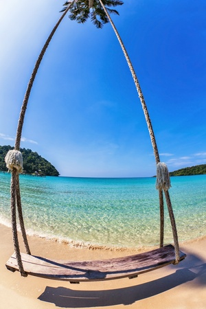 Swings and palm on the sand tropical beach   photo