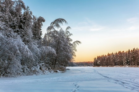 Beautiful winter sunset near the forest  Nature background  photo