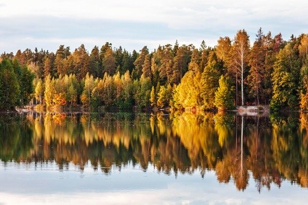 autumnal lake near the forest Stock Photo - 15399945