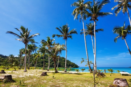 Beautiful tropical beach with  sea view, clean water   blue sky  Nature background Stock Photo - 15443920