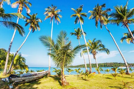 Beautiful tropical beach with  sea view, clean water   blue sky  Nature background Stock Photo - 16063907