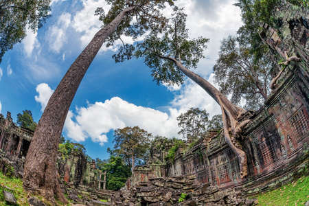 Ancient buddhist khmer temple in Angkor Wat complex, Cambodia Stock Photo - 16451805