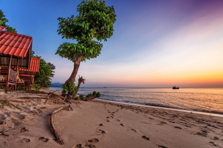 Tropical beach at beautiful sunset. Nature background  Stock Photo - 16451788