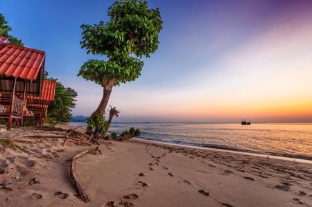 Tropical beach at beautiful sunset. Nature background Stock Photo - 16451788