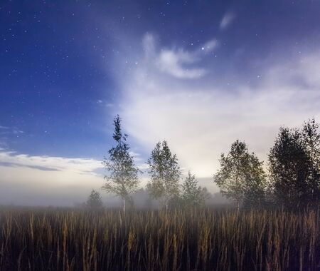 autumn night field alight with bright stars and clouds Stock Photo - 16584719