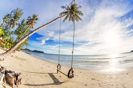 Swings and palm on the sand tropical beach  Fisheye look Stock Photo - 16942762