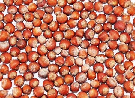 group of hazelnuts on white background Stock Photo - 17703195