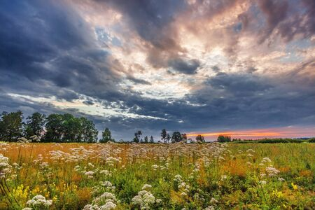 Landscape with coloful sunset in summer field  Stock Photo - 17703197