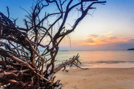 Tropical beach at beautiful sunset  Nature background  Stock Photo - 17956627