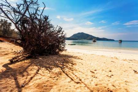 Beautiful tropical beach with  sea view, clean water & blue sky. Nature background Stock Photo - 18456288