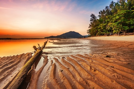 Tropical beach at beautiful sunset. Nature background  Stock Photo - 18456273
