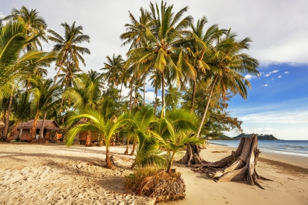 Beautiful tropical beach with  sea view, clean water & blue sky. Nature background Stock Photo - 18910852