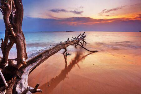 Tropical beach at beautiful sunset. Nature background Stock Photo - 18910691
