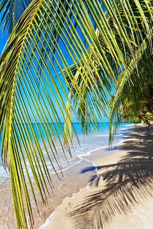 Beautiful tropical beach with  sea view, clean water & blue sky. Nature background Stock Photo - 18939146