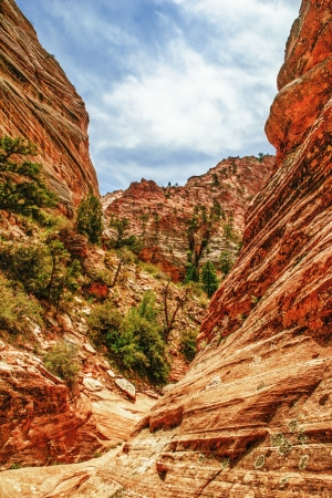Beautiful slopes of Zion canyon  Utah  USA   Stock Photo - 18918140