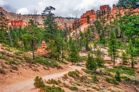 View from inside of Bryce Canyon  Utah  USA Stock Photo - 18918137