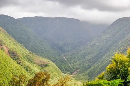 Mounts and jungle in foggy weather  Big island  Hawaii  USA Stock Photo - 18918130