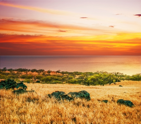 Colorful sunset around field and ocean  Big island  Hawaii Stock Photo - 18918139