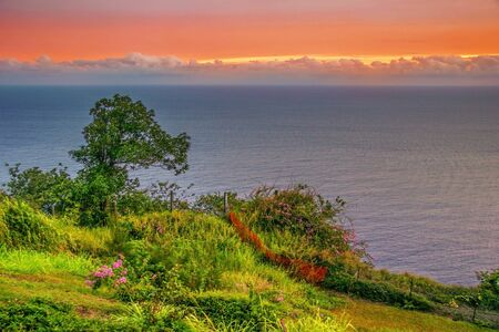 Colorful sunset around field and ocean  Big island  Hawaii Stock Photo - 18918133