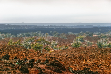 Foggy landscape of the valley, where the volcano was  big island  Hawaii  USA Stock Photo - 18918132