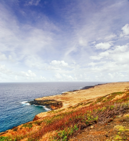 View on the ocean on Big island  Hawaii  USA  Stock Photo - 18918142