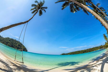 Swings and palm on the sand tropical beach  Fisheye look photo