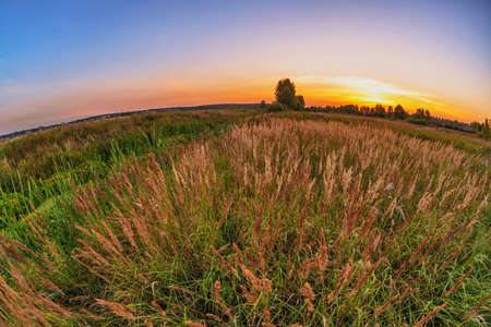 coloful: Landscape with coloful sunset in summer field  Stock Photo