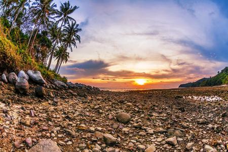 ebb: Tropikalna plaża w czasie ebb na tle słońca