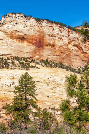 Beautiful slopes of Zion canyon  Utah  USA   photo
