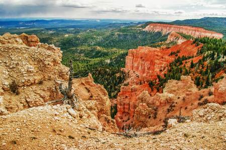 View from viewpoint of Bryce Canyon  Utah  USA  photo