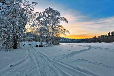 Road in winter forest at sunset time